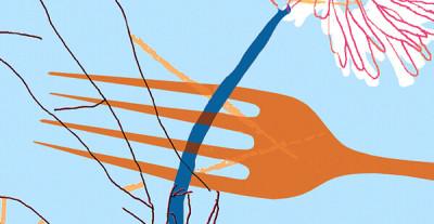 Kognitiv atferdsterapi ved spiseforstyrrelser