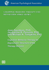 Structure of the Therapy Sessions